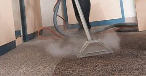 Windy City Steam Carpet Cleaning